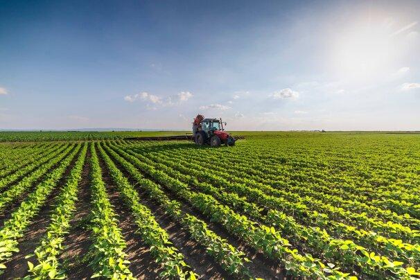 Химикаты для сельского хозяйства,пищевой промышленности,корм и ароматизаторов